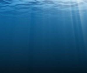 derin denizler