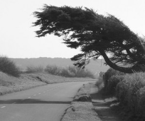 rüzgar hızını etkileyen faktör